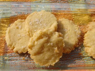 Sablés pour l'apéritif aux flocons d'avoine et parmesan sans oeufs