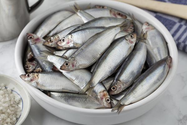 Sprats ©picturepartners shutterstock