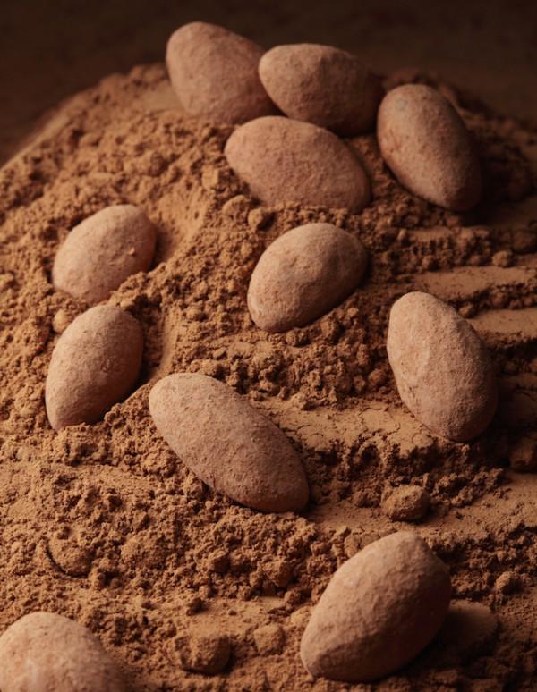 Amandes au chocolat sans oeufs sans lait sans gluten shutterstock