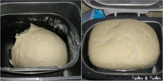 Pâton avant et après la levée