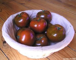 Tomates Kumato