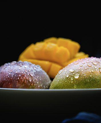 Mangue (c) Candoyi CC0 Pixabay
