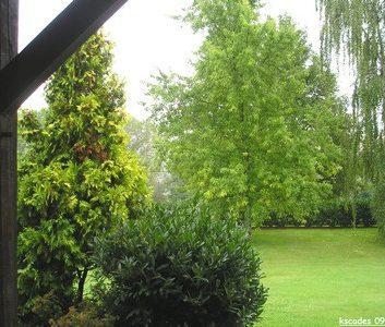 Vue de ma fenêtre – France : Auvergne, Bourgogne, Centre et Centre Ouest