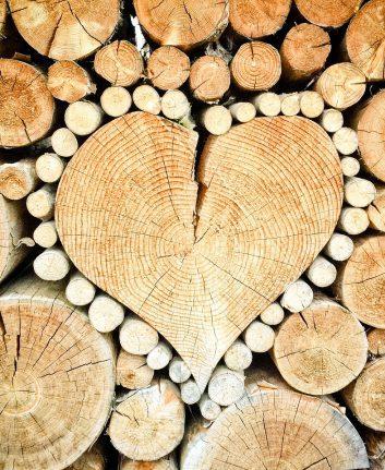 Coup de coeur ©TheUjulala CC0 Pixabay