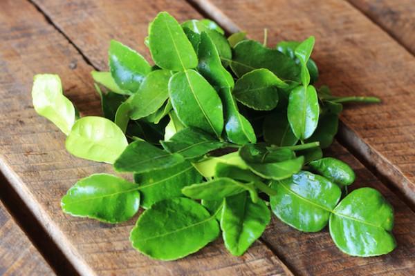 Feuilles de cumbava - Kafir leaves (c) Vanatchanan shutterstock