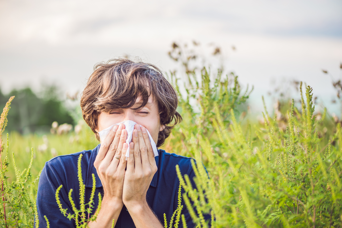 Allergies ©Elizaveta Galitckaia shutterstock