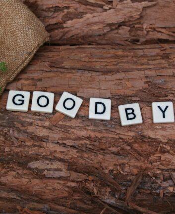 Au revoir ©KateCox CC0 Pixabay