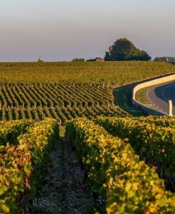 Route des châteaux - Medoc © SpiritProd33. shutterstock