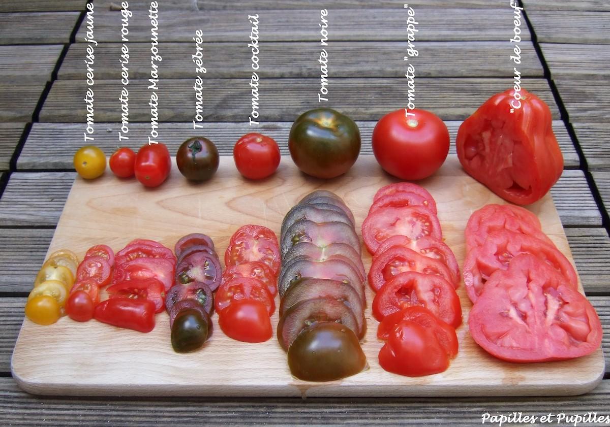 Tomates coupées