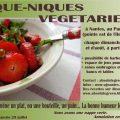 Pique-nique végétarien - Nantes