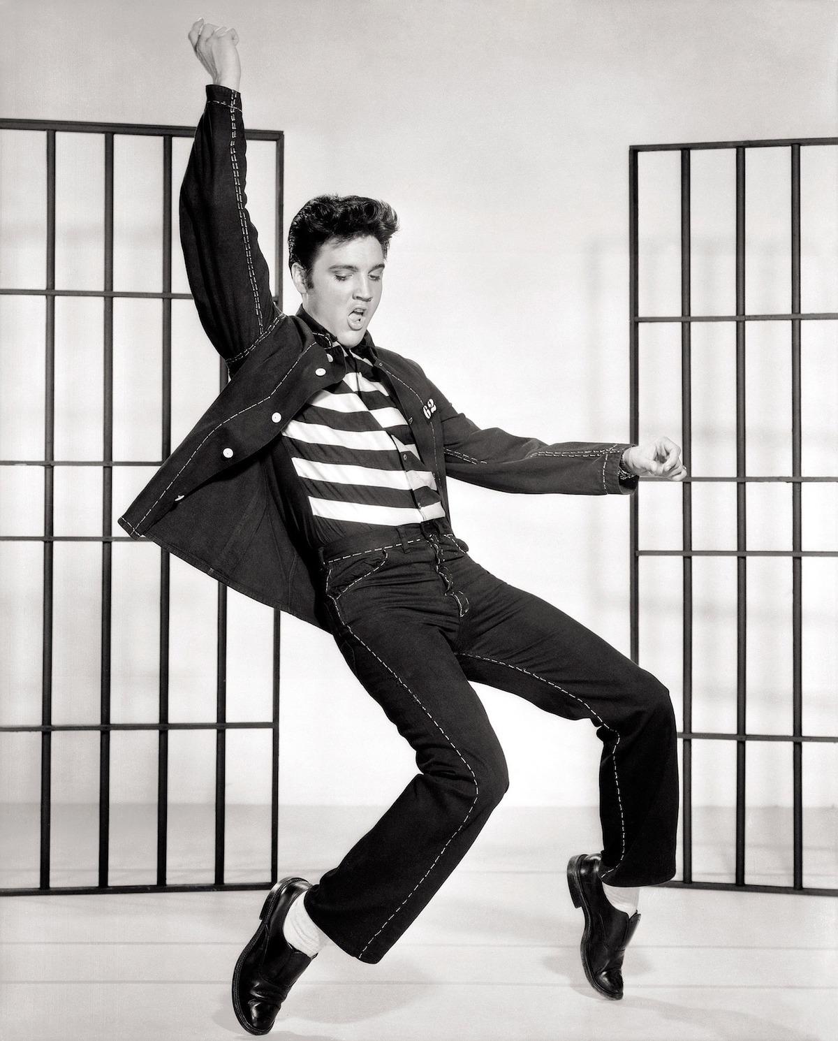 Elvis (c) Kaz CC0 Pixabay