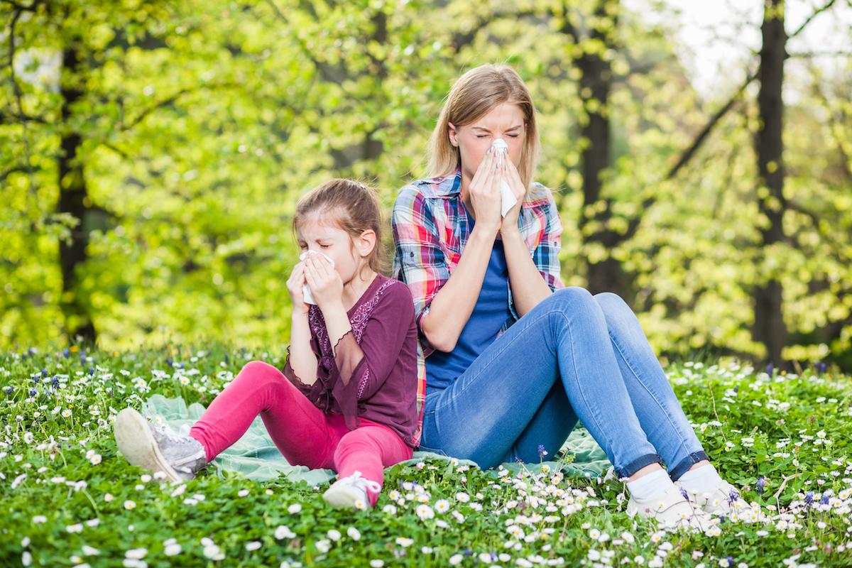 Symptôme allergiques - éternuement et nez qui coule ©Mladen Mitrinovic shutterstock