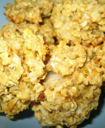 Biscuits avoine gingembre sans œufs sans lait