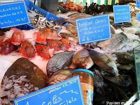 Etal de poissonnier
