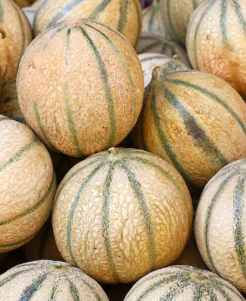 Comment choisir un melon ©Breaking The Walls shutterstock