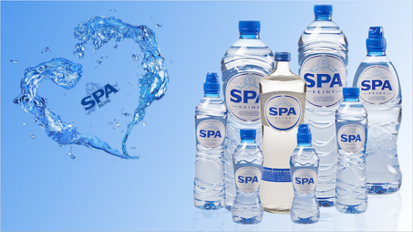 Spa Reine, l'eau qui purifie