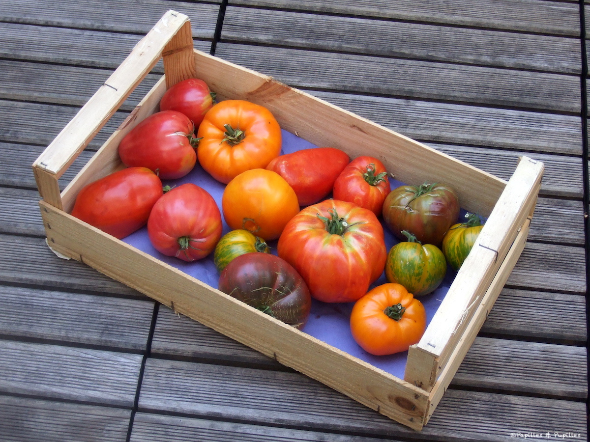Tomates de Chef Damien