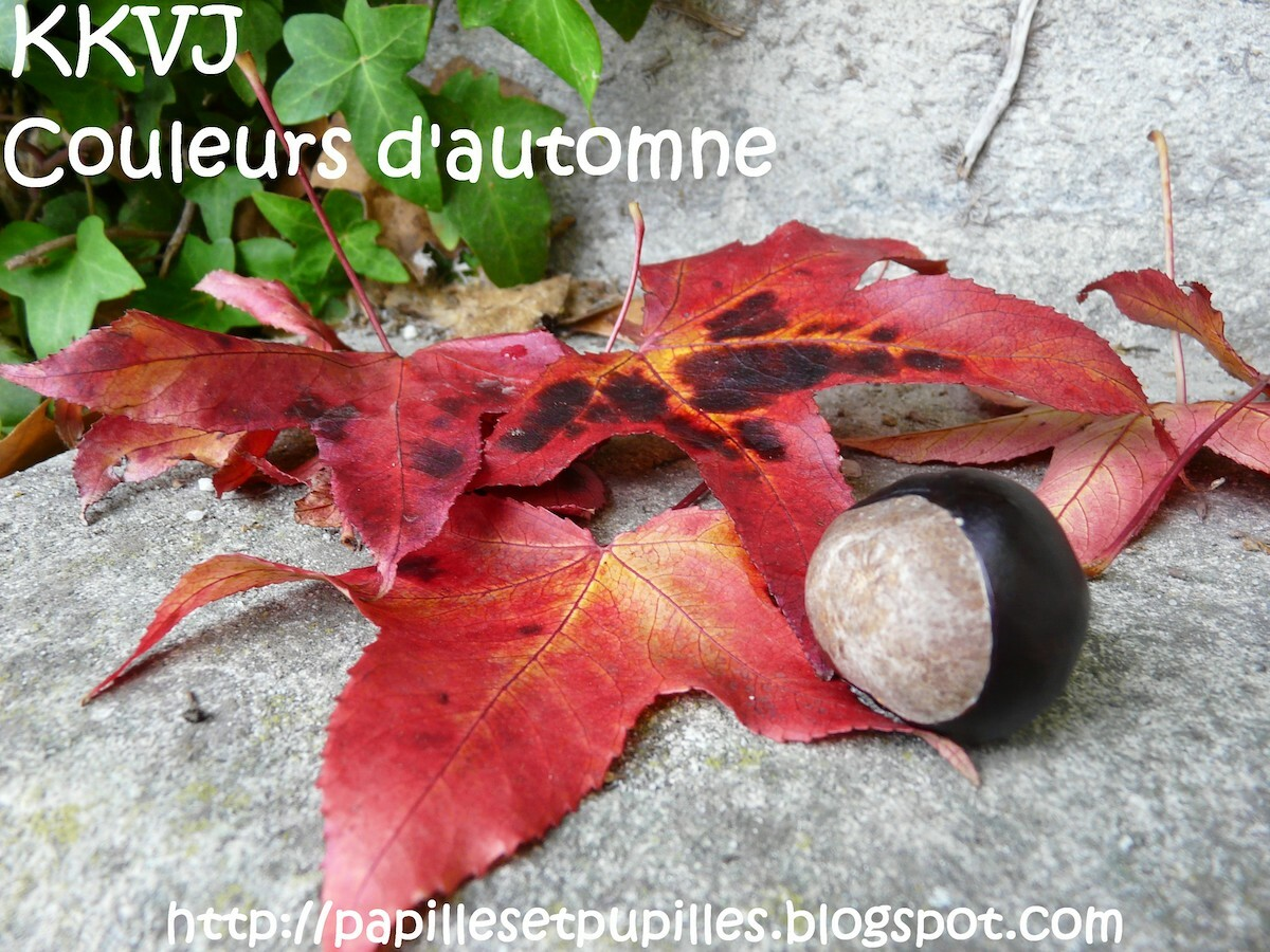 Couleurs d automne