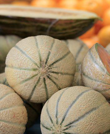 Melons ©R. Maximiliane shutterstock