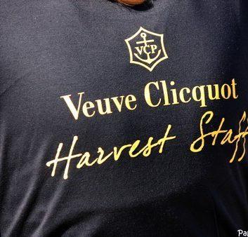 Tshirt Veuve Clicquot Harvest Staff