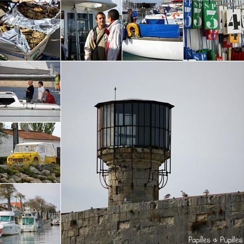 Entre La France Et L Espagne Semaine De Repos En Turquie: Huîtres Marennes Oléron : Les Différentes Variétés