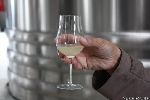 Verre de vin avant distillation - Domaine abk6