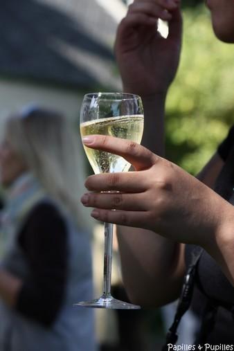 Champagne - Meilleurs voeux 2011