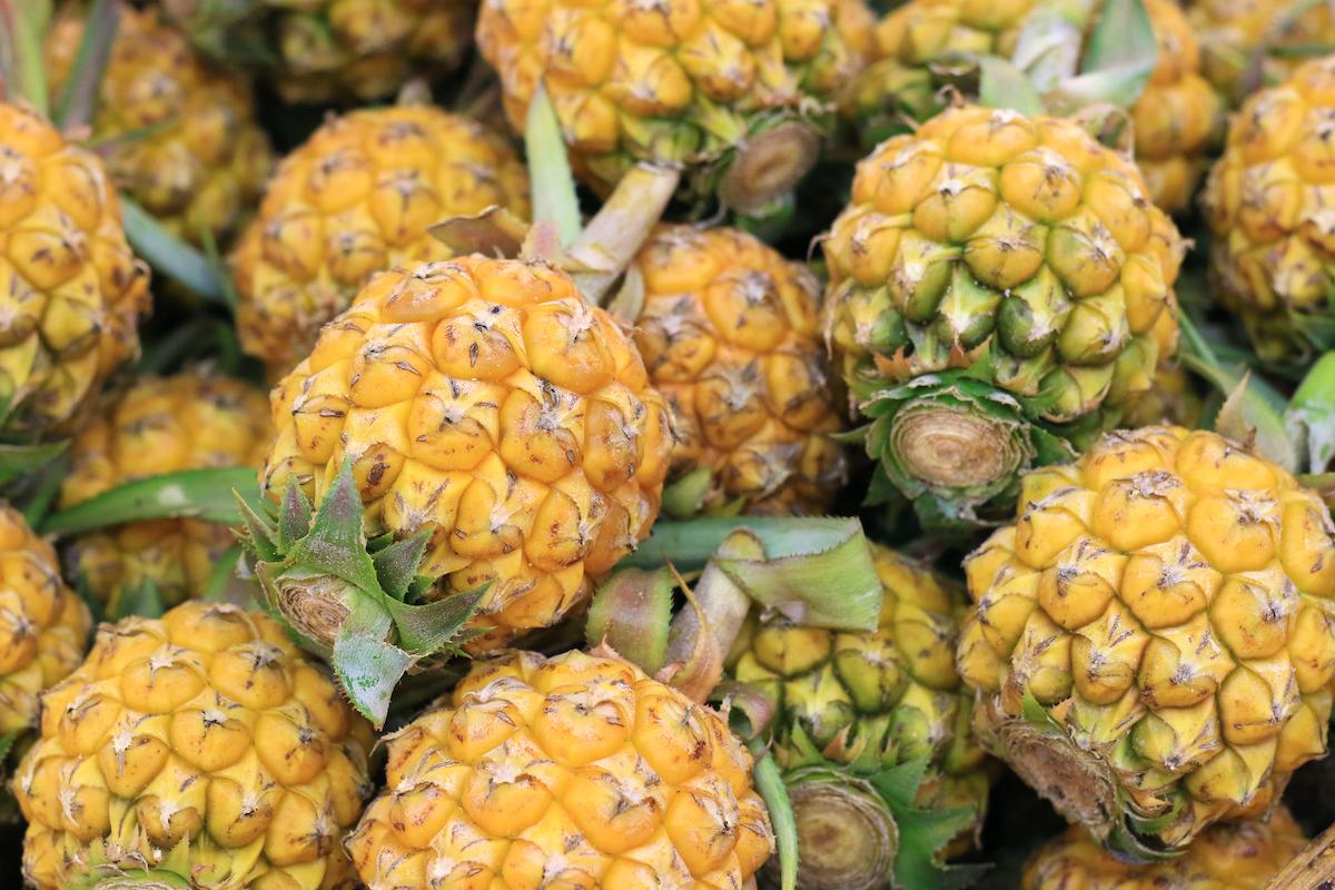 Ananas (c) Vanatchanan shutterstock