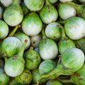 Aubergines blanches : vertes ©Poring shutterstock