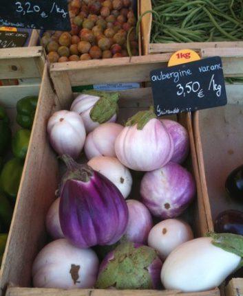 Aubergines - variétés anciennes