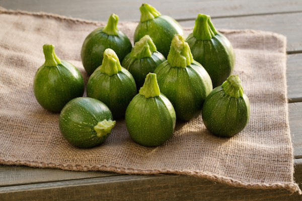Courgettes rondes ©ORLIO shutterstock