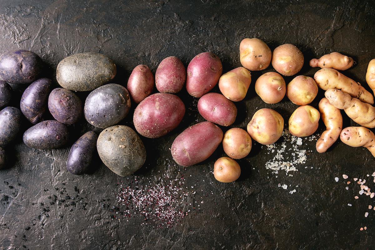 Différentes variétés de pommes de terre ©Natasha Breen shutterstock