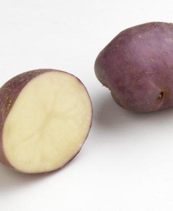 Pomme de terre bleue d'Auvergne
