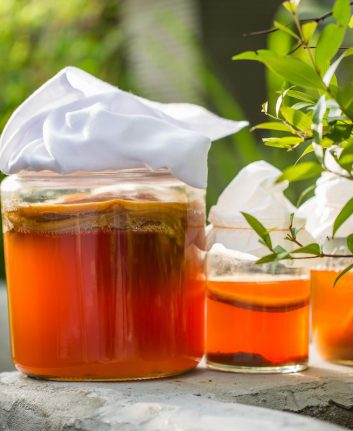 Kombucha ©Business stock shutterstock