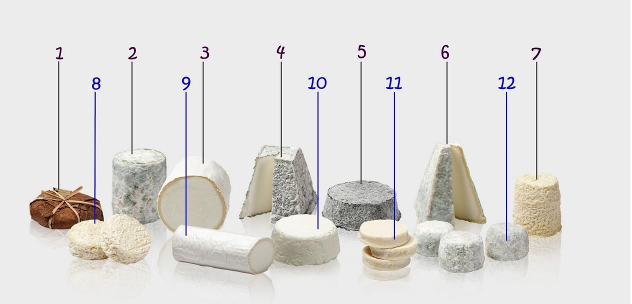 Devinettes fromages de chèvres