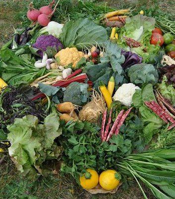 Légumes Joël Thiébault (c) Facebook
