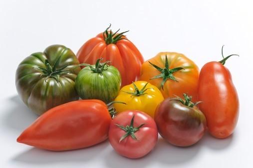 Tomates saveurs d'Antan @Prince de Bretagne / Expression