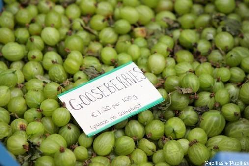 Gooseberries - groseilles à maquereau