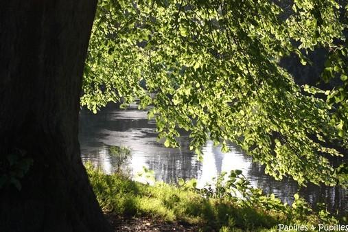 Parc à Cork