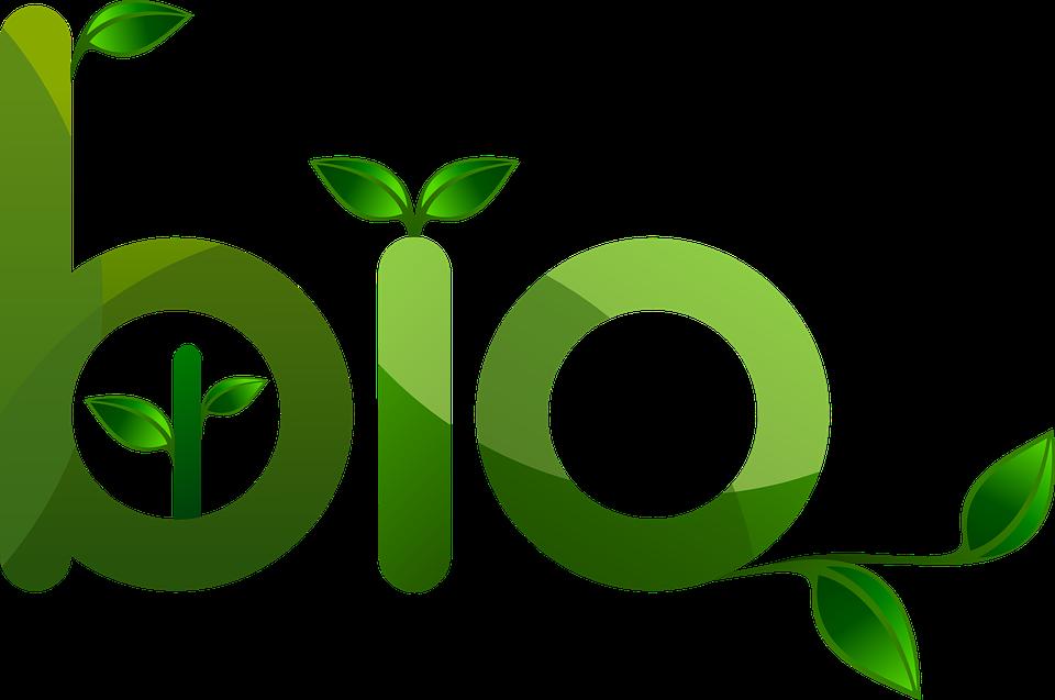 image logo bio