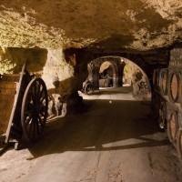 Caves - Champagnes Jacquart