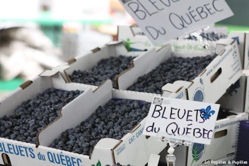 Bleuets du Québec