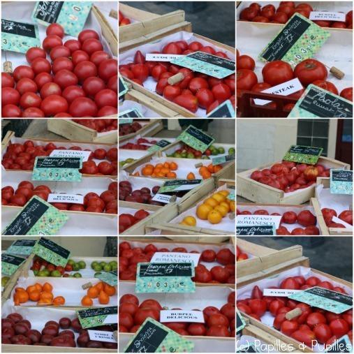 Des tomates, beaucoup de tomates