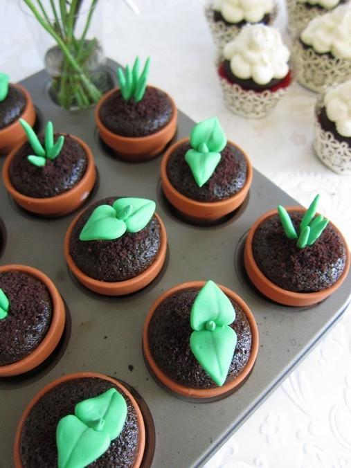 Plantation de cupcakes