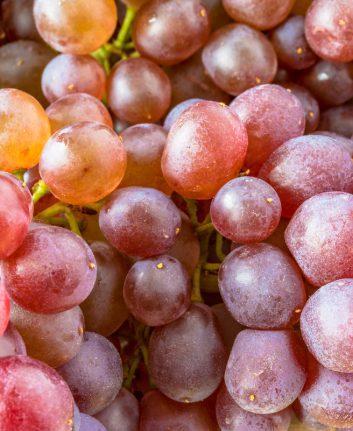 Raisins de Corinthe frais © BobNoah shutterstock