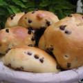 Petits pains au lait de noisettes et aux pépites de chocolat