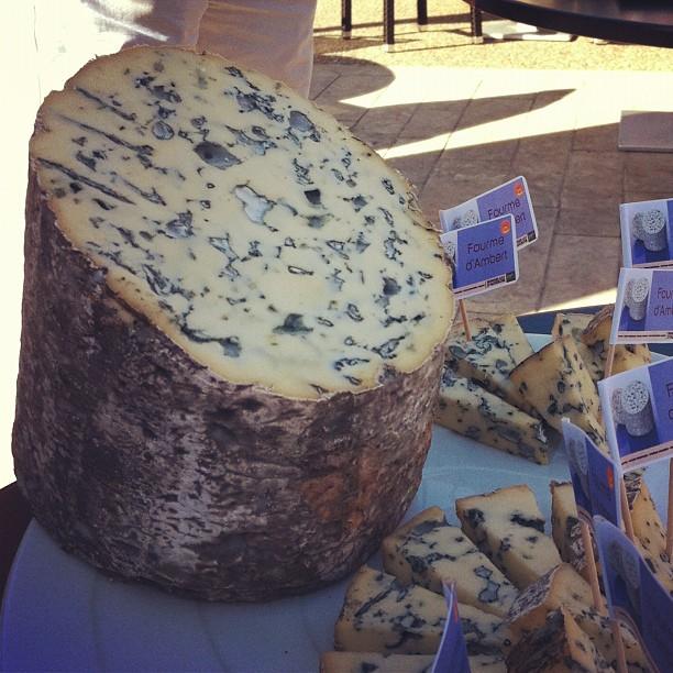 Fourme d'Ambert - le plus doux des fromages bleus #fromage