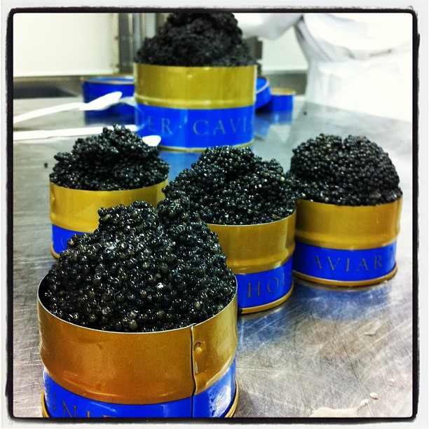 Trésor - Maison Prunier (caviar)