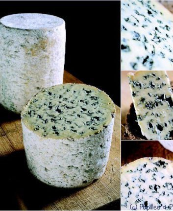 Fourme d'Ambert - Fromage d'Auvergne