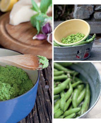 Purée de fèves à la menthe et au Parmesan ©Annabel Langbein